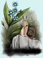 Singing snail teal .png