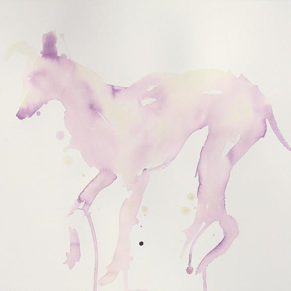 Greyhound, 55 x 75 cm, watercolour.