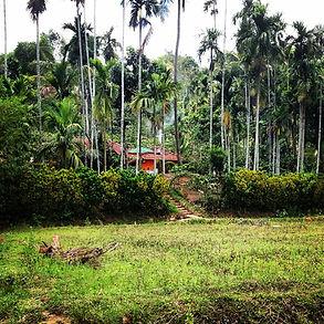 Homestay in Wayanad, Kerala