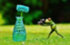vase-1407226_960_720.jpg