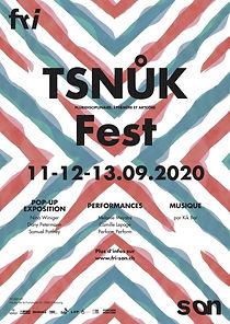tsnukfest_poster.jpg