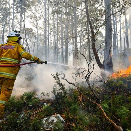 森林火災とメンタルヘルス