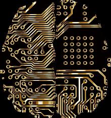 brain-3717690_640.png