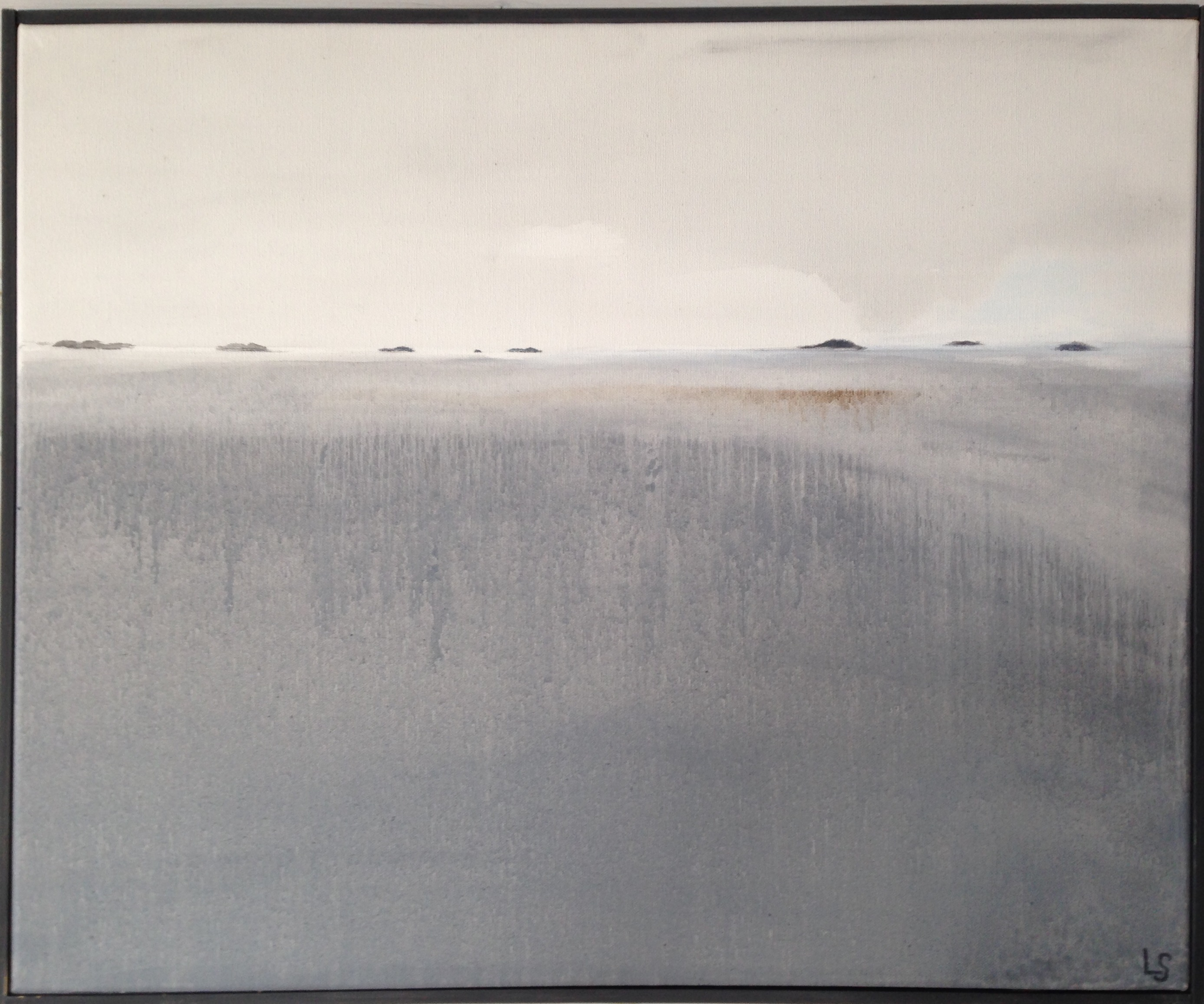 Dimma grå-14