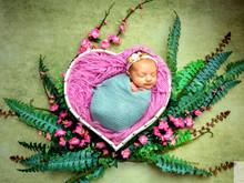 Newborn Isabella - 16 dias