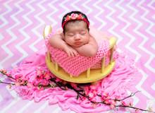 Newborn Maria Antônia - 14 dias