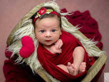 Newborn Isadora - 15 dias!