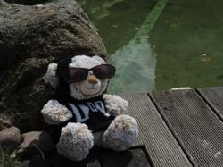Doddy am Teich
