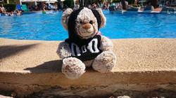 Doddy am Pool