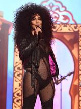 Cher Farewell Tour
