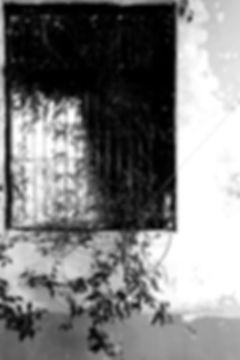 BEYOND the windows of th east coast by Yasuhiro Iguchi #3