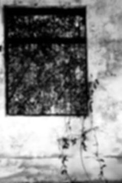 BEYOND the windows of th east coast by Yasuhiro Iguchi #21