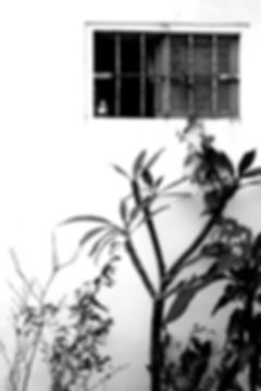 BEYOND the windows of th east coast by Yasuhiro Iguchi #6