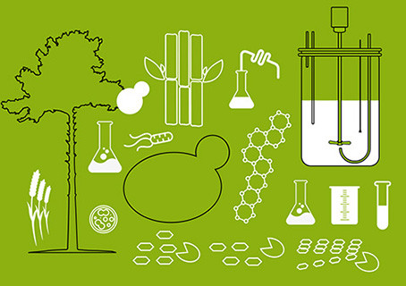 Fully online: Post-graduate course on Industrial Biotechnology for Lignocellulose Based Processes