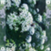 GW R004 cover.jpg