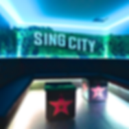 SINGCITY (10)_edited.png