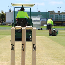 Cricket Pitch Preparation.jpg