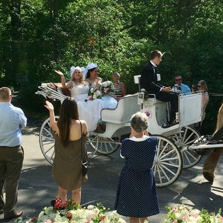 Bridal-Party-Horse-Carriage.jpg