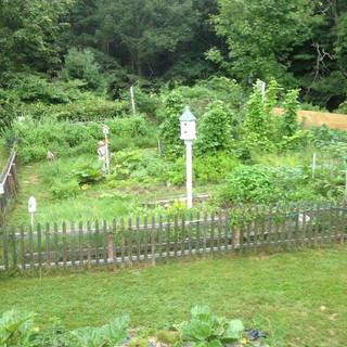 Gardens of Clay Hill Farm