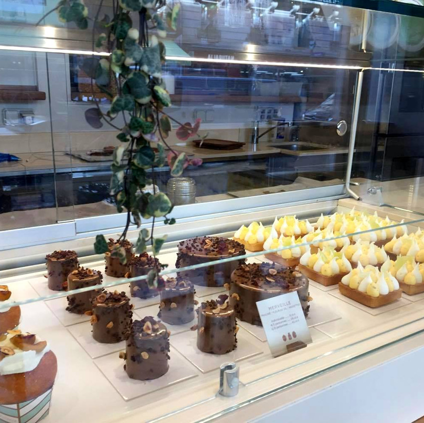 the selection of treats