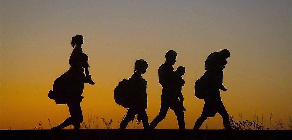 migration_pmr.jpg