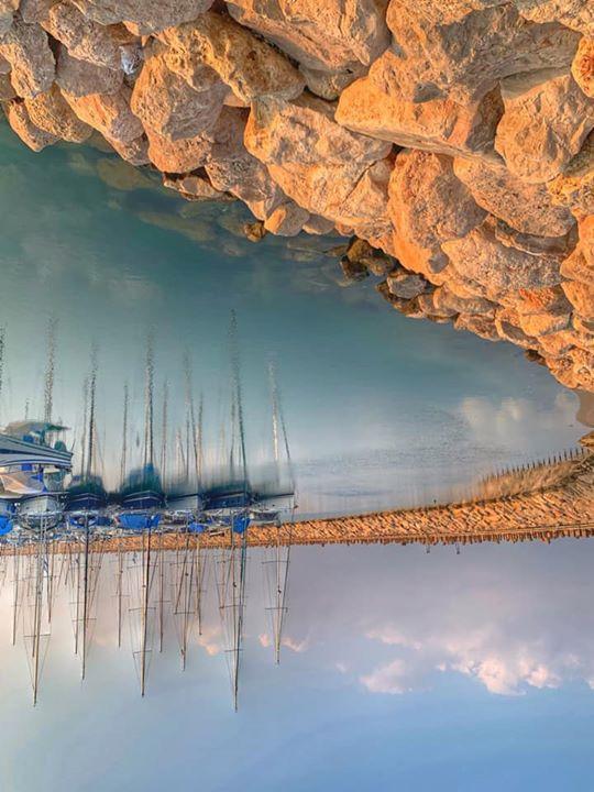בנמל יפו