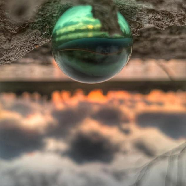 צולם בנייד- נתלי תמיר בסדנת צילום שהנחתי בפארק הירקון
