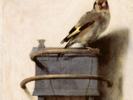 MORE people should be talking about Carel Fabritius...