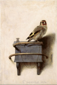 Goldfinch bird attached to chain painted by Carel Fabritius in 1654