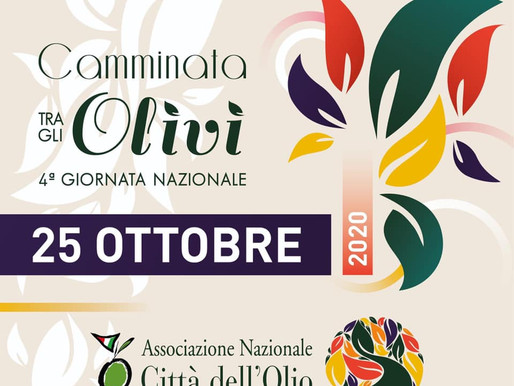 Camminata tra gli olivi 2020 | Walking in an olive grove 2020