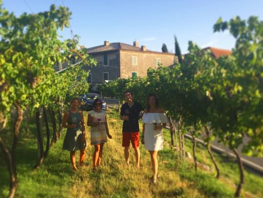Turismo enoico e accoglienza a Tenuta Santa Maria Valverde re-opening 2020