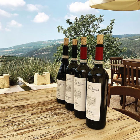 La selezione vini Tenuta Santa Maria Valverde