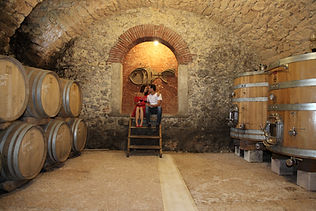 Love and wine in Verona