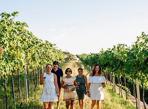 Wine experience Valpolicella