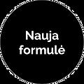 nauja formule.png