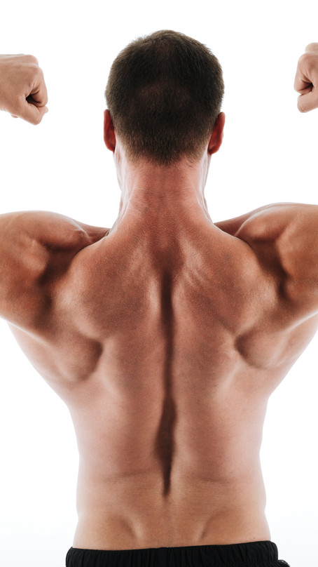 Check Out That Sexy Back. Let's Bodybuild!