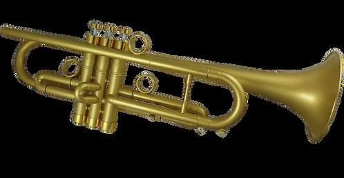 John Packer Bb Trompet by TAYLOR