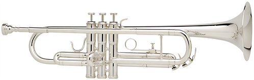 Besson Bb Trompet New Standard Student