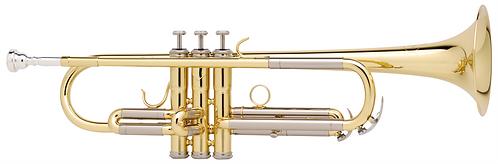 Besson BE111 New Standard  Advanced