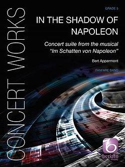 In the Shadow of Napoleon - Bert Appermont