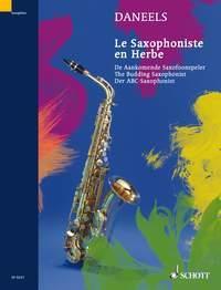 The Budding Saxophonist - François Daneels