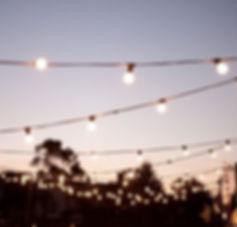 festoon-lights1-003-600x574.jpg