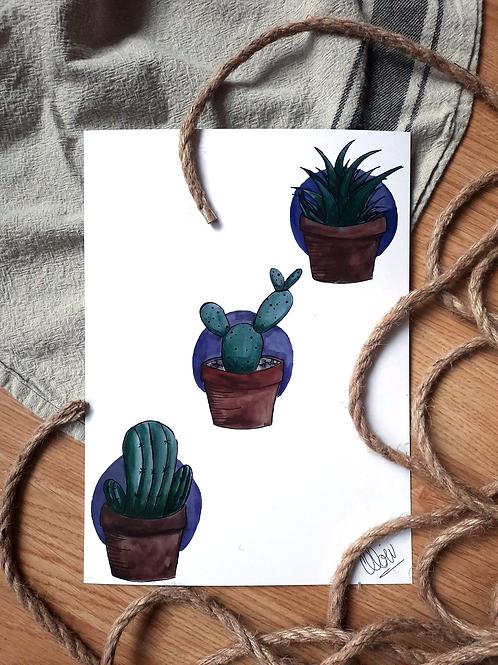 """Illustration - Cactus Trio 8""""x11"""""""