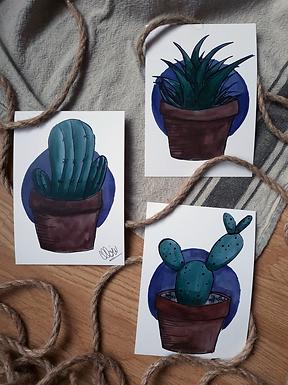 """Illustration - Cactus Trio 3x 5""""x7"""""""