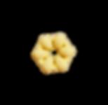 Fiori Pasta 3