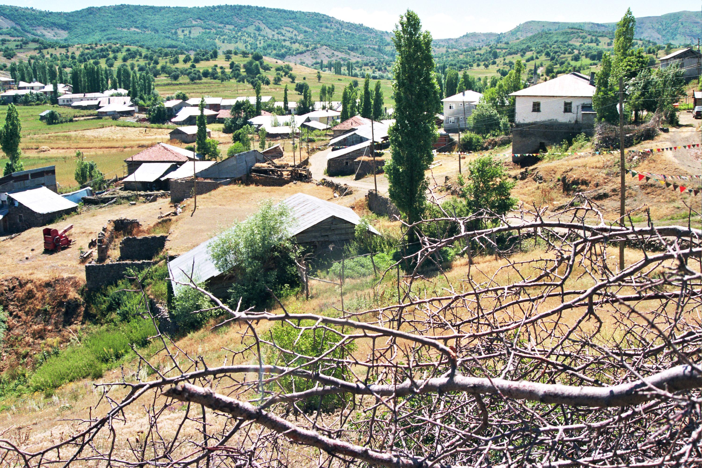 2006 GÜHERTAŞ RESİMLERİ 011