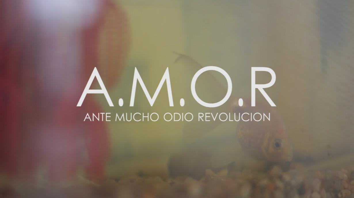 A.M.O.R