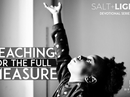 Reaching for the whole measure - Salt and Light series