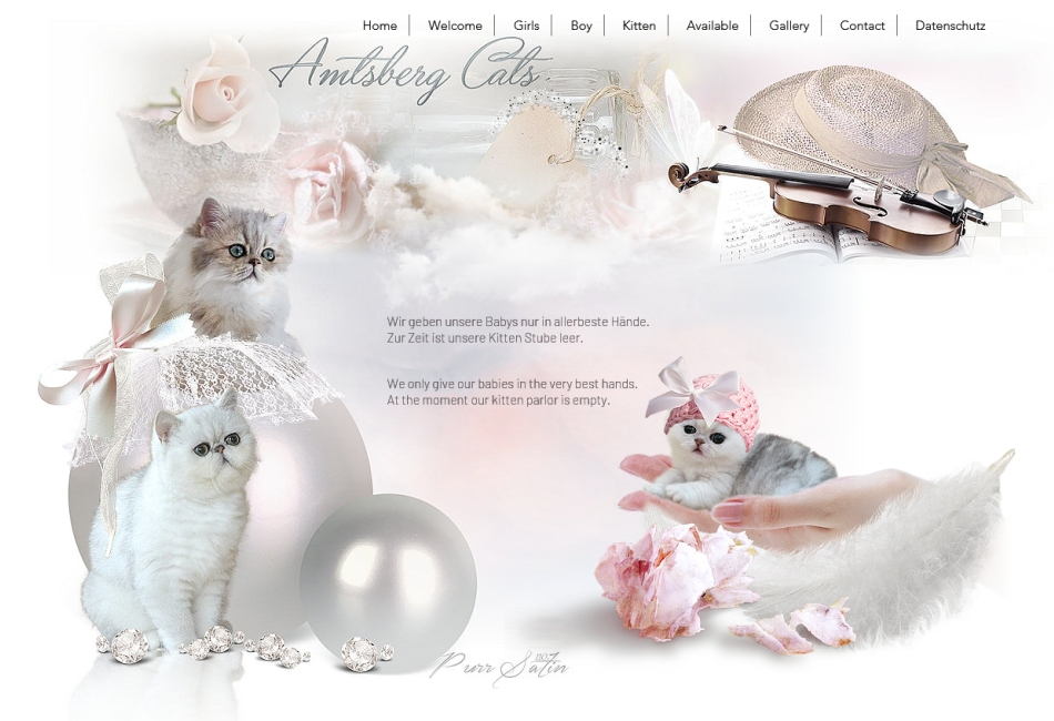 Amtsberg Cats