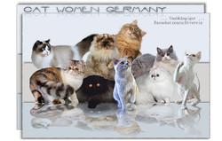 Cat Women Germany